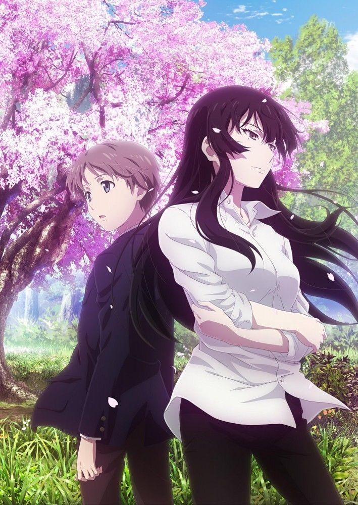 >Sakurako-san no Ashimoto ni wa Shitai ga Umatteiruu ตอนที่ 1-12 ซับไทย